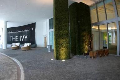 Ivy Condos Entrance View